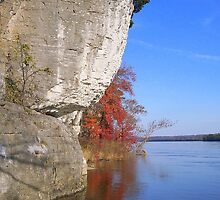 Ohio River bluffs at Cave in Rock, IL by Mona Gainey-Lanier