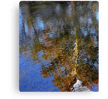 Fluid Beauty Canvas Print