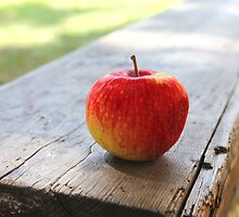 Red apple on a wooden bench by Kingsfairy