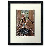 Rain Seeker Framed Print