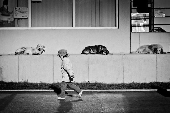 OnePhotoPerDay Series: 324 by L. by C. & L. | ABBILDUNG.ro Photography