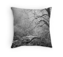 engelberg 3 Throw Pillow