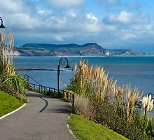 A Walk Through The Gardens ~ Lyme Regis by Susie Peek