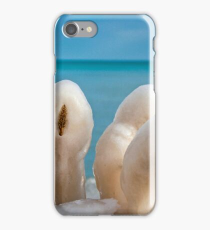 Ice Sculptures iPhone Case/Skin