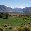Edoras, Mt Sunday, Lord of the Rings, NZ by johnrf