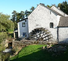 The Old Millhouse,Annacurragh,Co.Wicklow,Ireland. by Pat Duggan