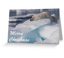 Polar Bear - Merry Christmas Card Greeting Card