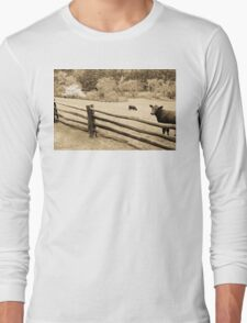 Cows on Blue Ridge Parkway Long Sleeve T-Shirt