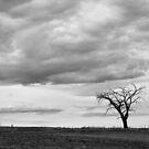 tree by Vendla