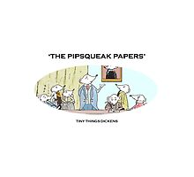 Book lover's Bag -Tiny Things Dickens 'The Pipsqueak Papers' by doonesdoodles