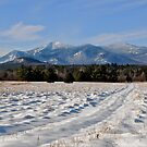 Winter at Whiteface  by main1
