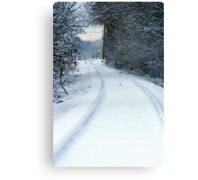 Tracks under the snow... Canvas Print