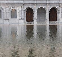 Not Venice by Judi FitzPatrick
