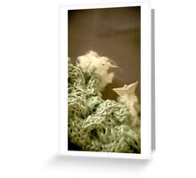 Mer de laine tricotée - Knitted wool sea Greeting Card
