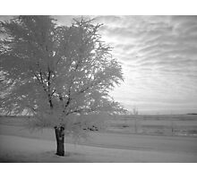 Calm After The Storm Photographic Print