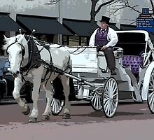 Indianapolis Carriage Driver by Crayle