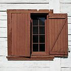 Open and Shutters by Ethna Gillespie