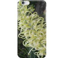 "Grevillea ""Moonlight"" iPhone Case/Skin"