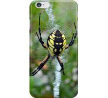 Garden Orb Weaver Spider iPhone Case/Skin