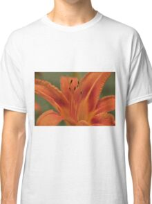 Orange Daylilly, As Is Classic T-Shirt
