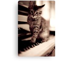 World Class Pianist... Canvas Print