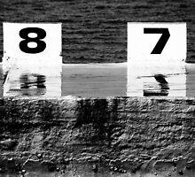 87 by Ann Evans