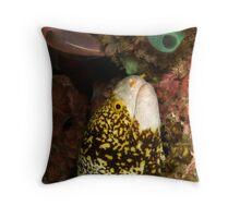 snowflake moray - echidna nebulosa Throw Pillow