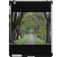 pretty when you're just visiting iPad Case/Skin