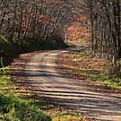 November Backroad by Geno Rugh