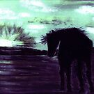 Blue Moon by Dawn B Davies-McIninch