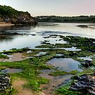 Hopkins River - Warrnambool by Cecily McCarthy