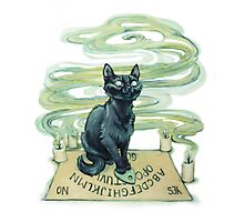 Ouija Cat Photographic Print