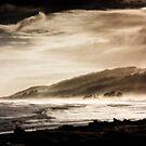 Beach Mist by Mike Johnson