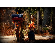 Autumn Along the Rural Road Photographic Print