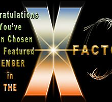 The X Factor Feature Group Banner Challenge by imagetj