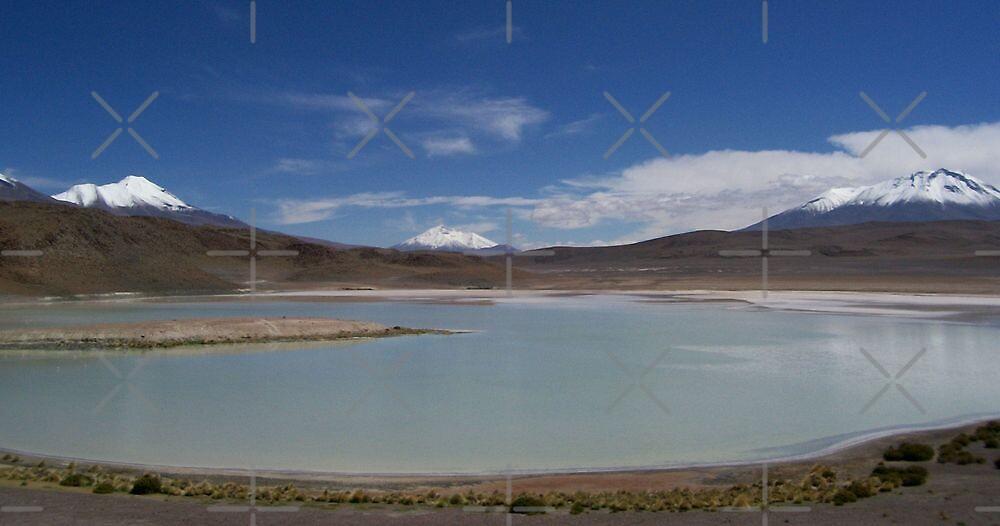 Lagoon in Uyuni by Alessandro Pinto