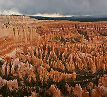 Bryce Canyon Maze by Gregory J Summers