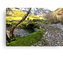 Bridge Approach  - Wasdale Head Metal Print