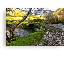 Bridge Approach  - Wasdale Head Canvas Print