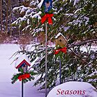 Seasons Greetings Birdhouse card by Kathy Weaver