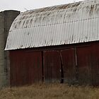 Old Barn by BarbL