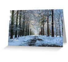 Lane through snowy woods  Greeting Card