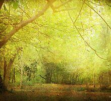 Pastureland by DottieDees
