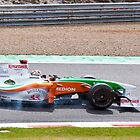 Force India by Richard Keech