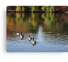 Fall Colors and Pond Canvas Print