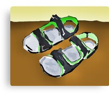 grey and green sandals Canvas Print