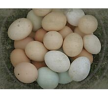 Basket of Eggs With Grunge Textures Photographic Print