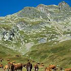 Alpine Milk Cows by Skye Hohmann