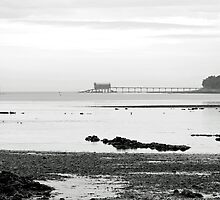 Bembridge Lifeboat Station from St Helens by Rod Johnson