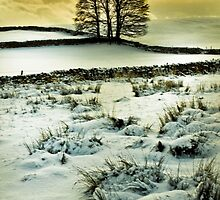 Wintry Scene by Jim Kernan
